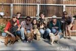 KAPS Volunteers Walk Dogs