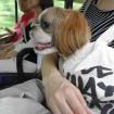 TK loves public transportation!