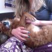 snuggle bunny!~