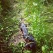 June 12th- Hiking again