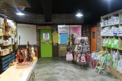 AnyPet Animal Hospital, Cheonan