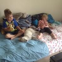 Emmett/Archer, the blind puppy, adopted.